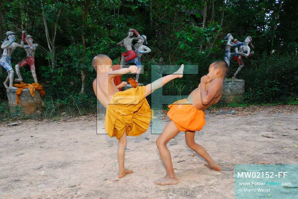 MW02152-FF | Thailand | Goldenes Dreieck | Reportage: Buddhas Ranch im Dschungel | Die jungen Mönche lernen Muay Thai (Thaiboxen)  ** Feindaten bitte anfragen bei Mario Weigt Photography, info@asia-stories.com **