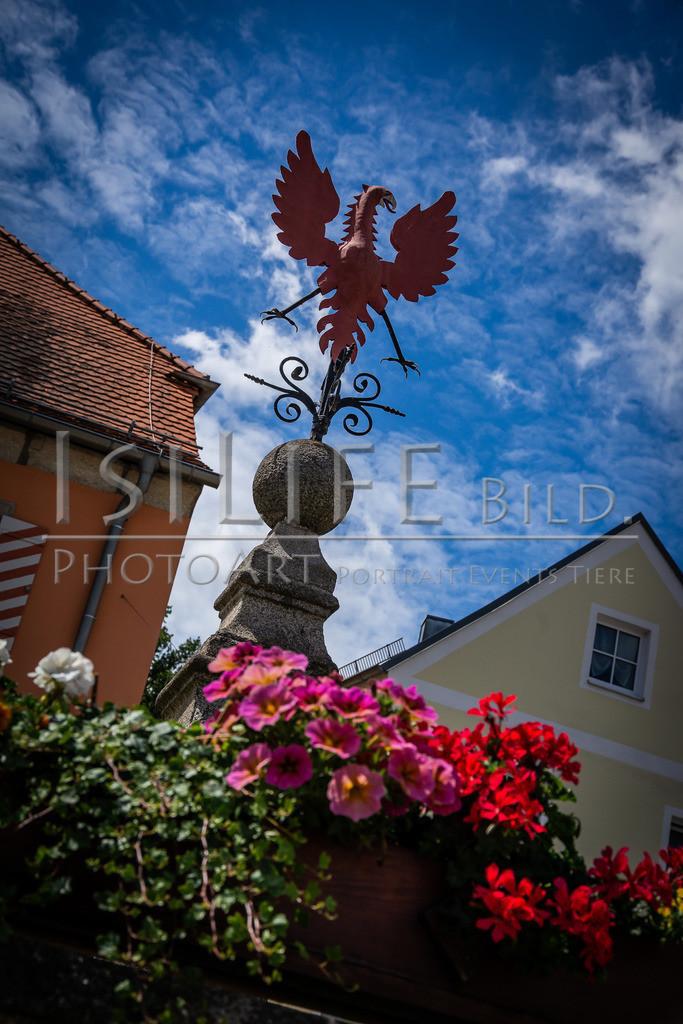 Naturschutzgebiet Doost | Marktplatz in Floß