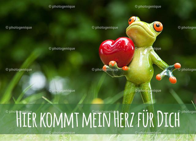 Postkarte Grußkarte Glückwunschkarte Frosch Hier kommt mein Herz für Dich | Postkarte Grußkarte Glückwunschkarte, Ein Frosch steht im grünen Gras und trägt ein rotes Herz, mit dem Spruch Hier kommt mein Herz für Dich