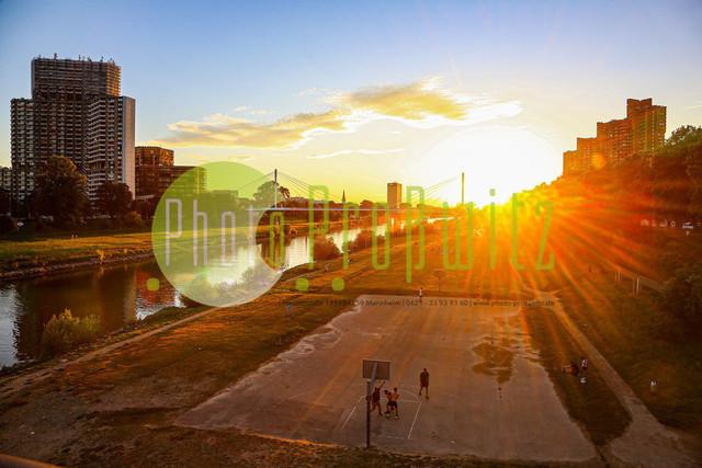 Sonnenuntergang am Neckar | Mannheim. 28JUL20 | Mannheim in der Abendsonne am Neckar. Sonnenuntergang. Mit Neckaruferbebauung und dem Collins Center (links)   BILD- ID 2103 | Bild: Photo-Proßwitz 27JUL20