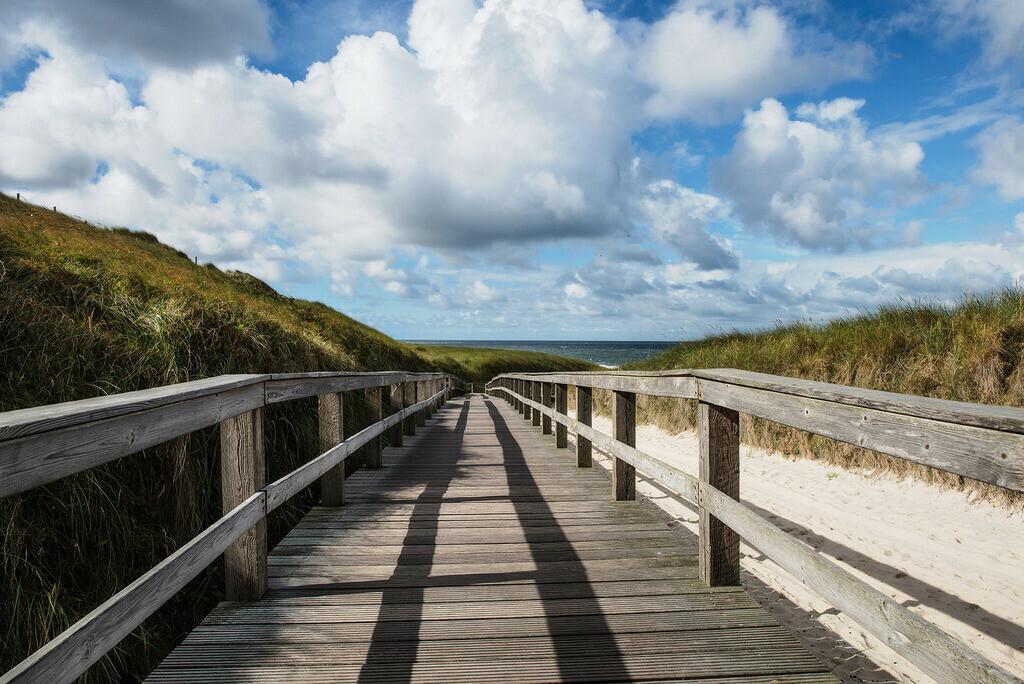 Holzsteg zum Strand | Holzsteg durch die Dünen zum Strand, Wenningstedt Sylt