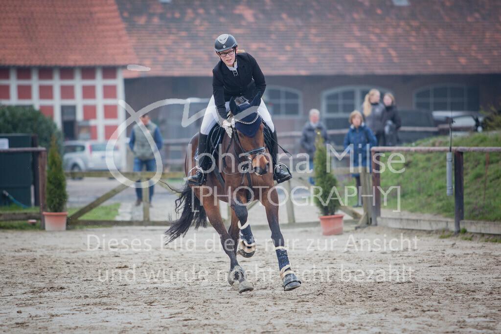 190406_Frühlingsfest_StilE-066 | Frühlingsfest der Pferde 2019, von Lützow Herford, Stil-WB mit erlaubter Zeit