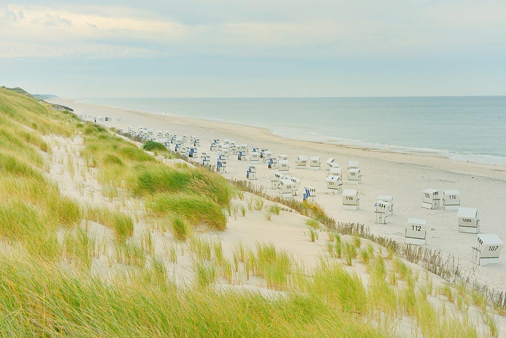 Strandkörbe am Weststrand | Strandkörbe am Weststrand, Sylt, Schleswig-Holstein. Blick von der Düne auf einen endlosen Strand bis zum Horizont.