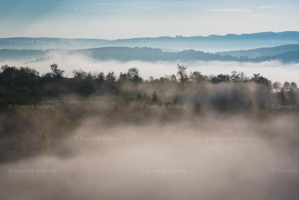Lupfurdum | Aufstieg vom Nebel
