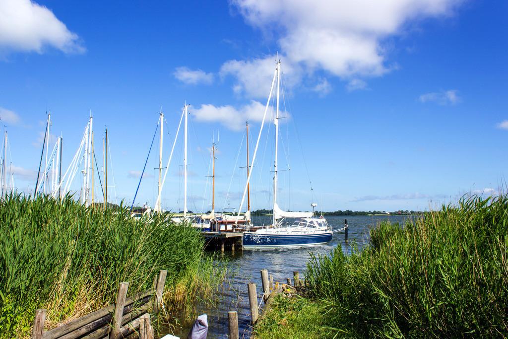 Maasholm an der Schlei | Yachthafen in Maasholm an der Schlei im Sommer