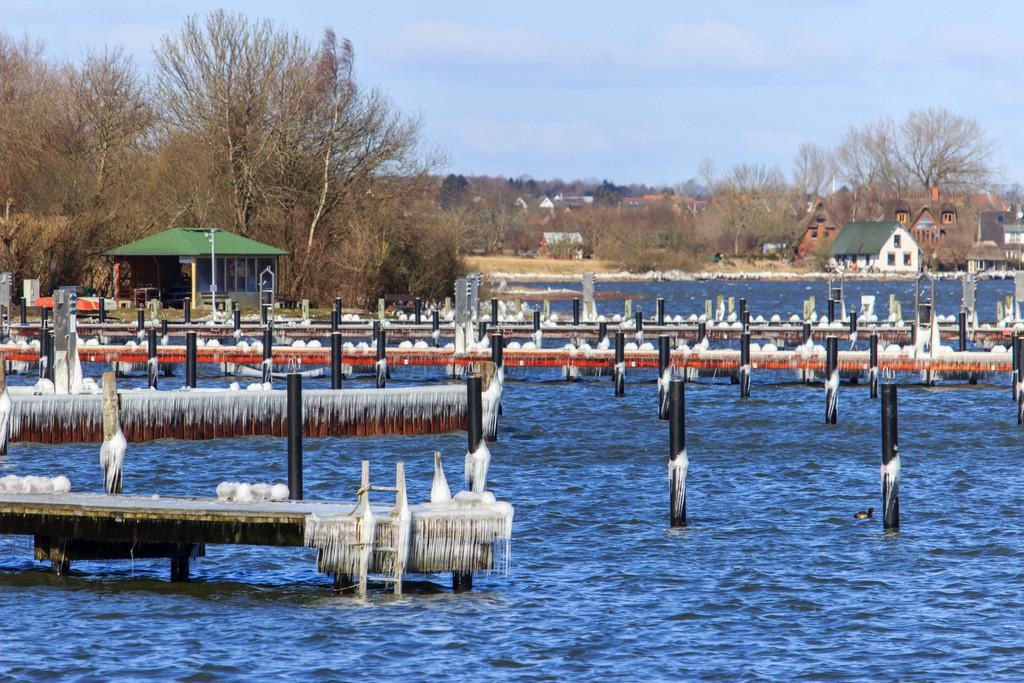 Arnis an der Schlei   Vereister Yachthafen in Arnis an der Schlei