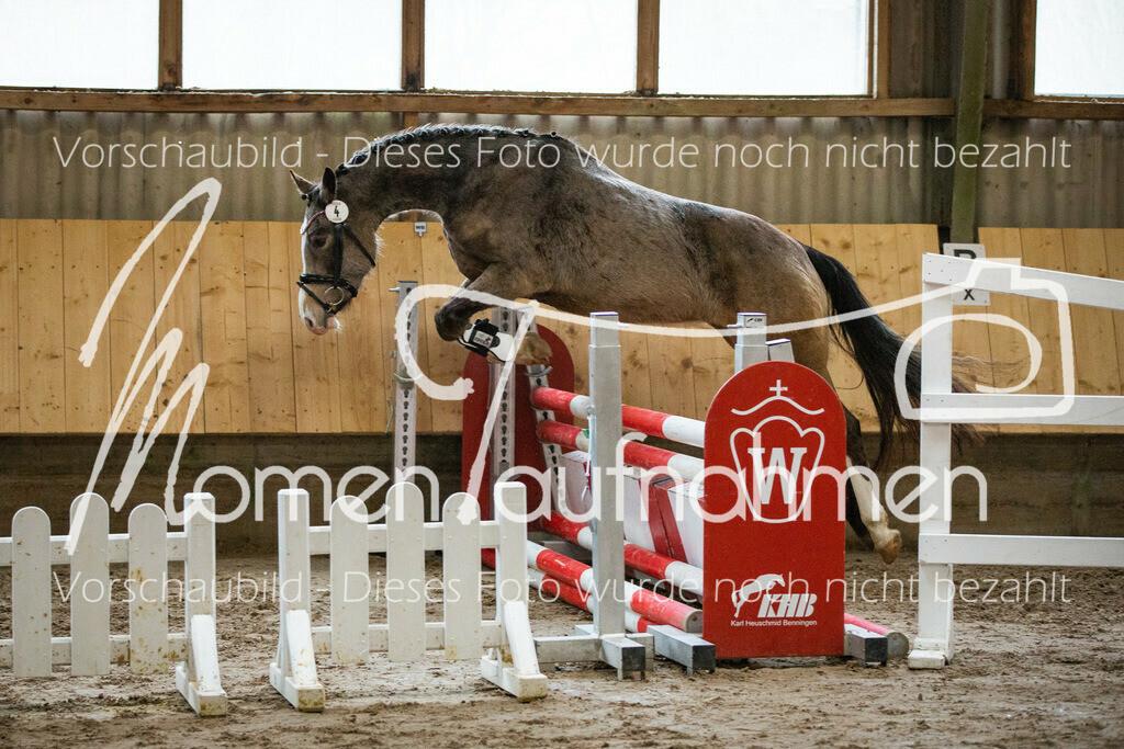 Freispringen-Pony-3j-26