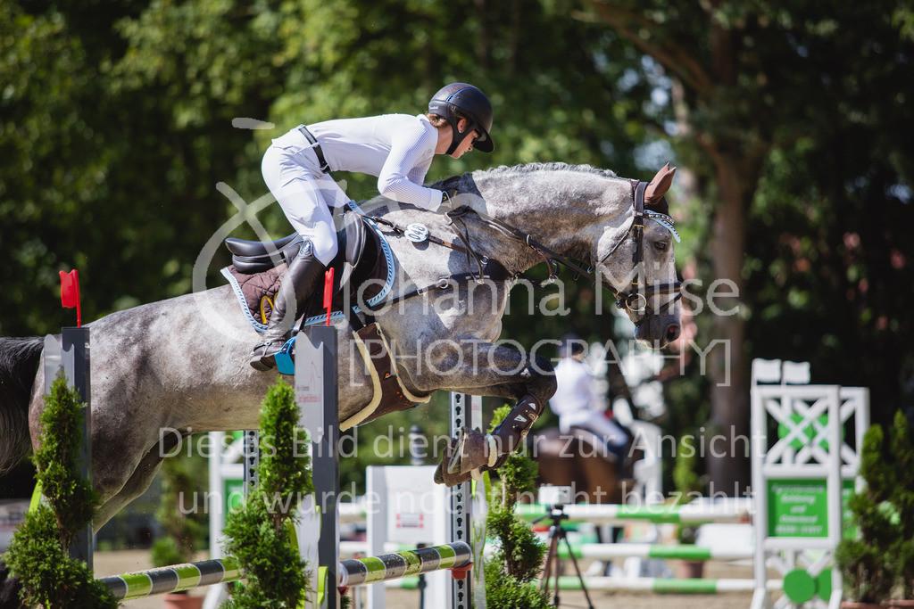 200819_Delbrück_Sprpf-A_2_1-220 | Delbrück Masters 2020 Springpferdeprüfung Kl. A** 4-6jährige Pferde