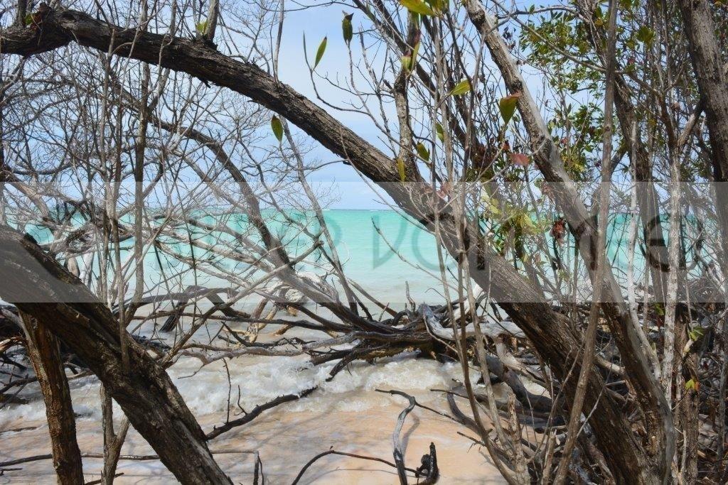 Bilder vom Meer aus Kuba | Blick von der Insel Cayo Jutía auf das Meer