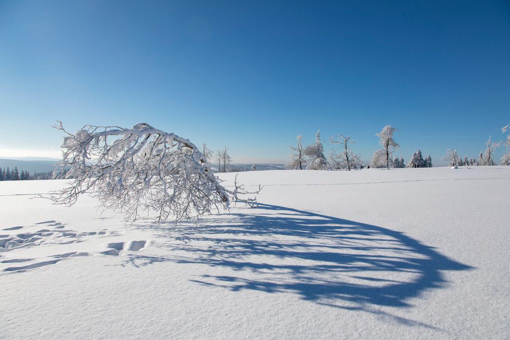 JT-170116-147   Winter auf dem Kahlen Asten, Sauerland, höchster Berg in NRW, tief verschneite Landschaft