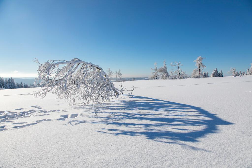 JT-170116-151   Winter auf dem Kahlen Asten, Sauerland, höchster Berg in NRW, tief verschneite Landschaft