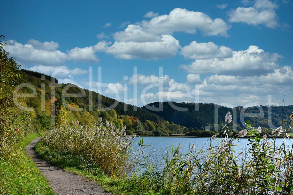 Landschaft am Meerfelder Maar | Meerfeld, Vulkaneifel