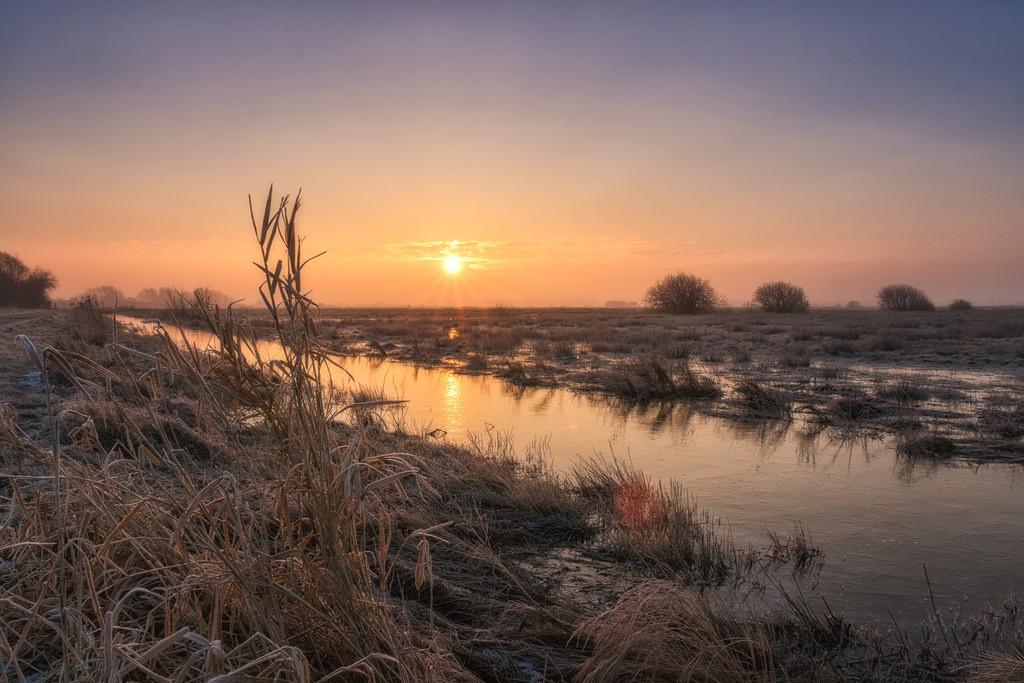 Sonnenaufgang in den Hammewiesen   Ein toller Sonnenaufgang in den Hammewiesen.