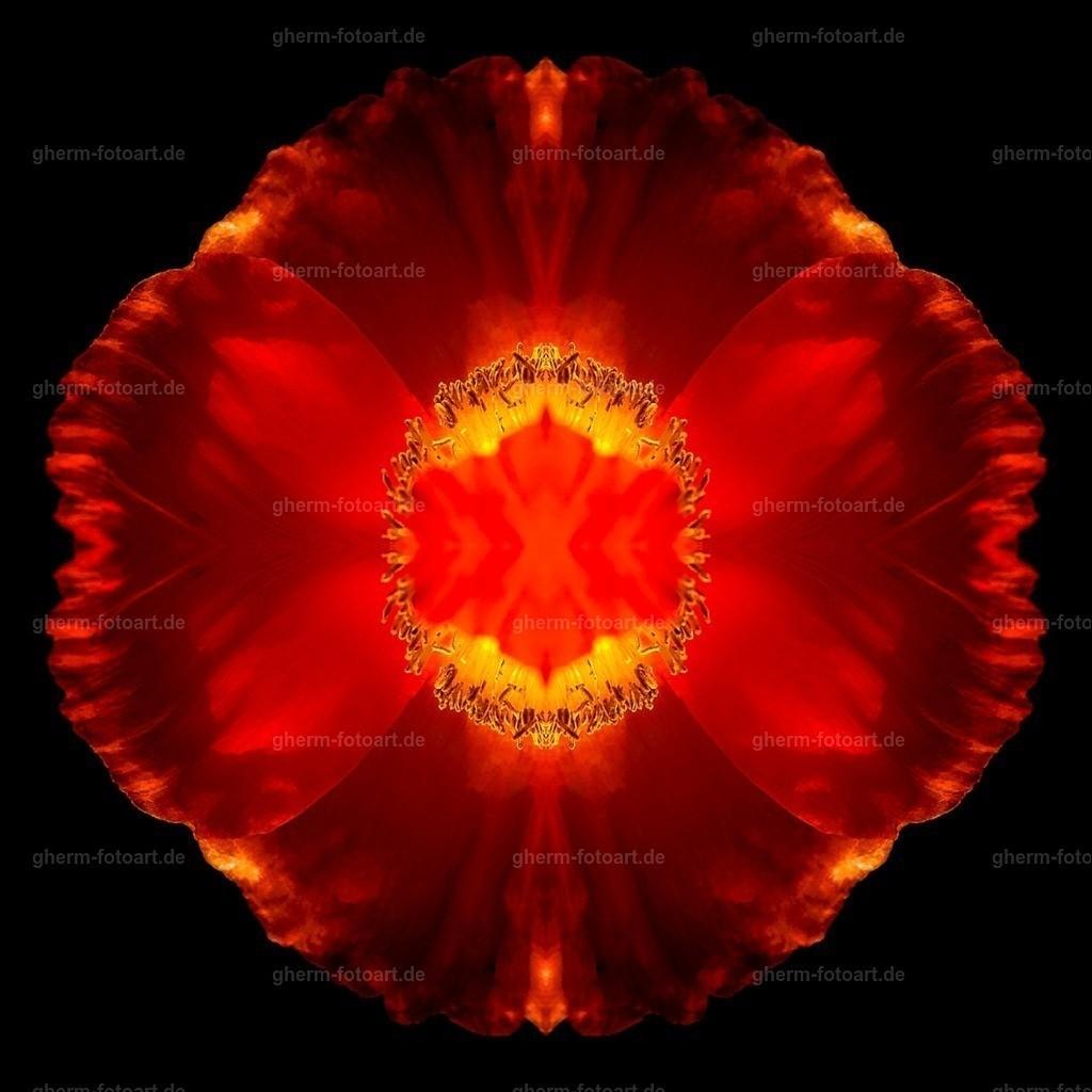 IMG00156-LR-korr-q-lmnr-kaleidoskop-7