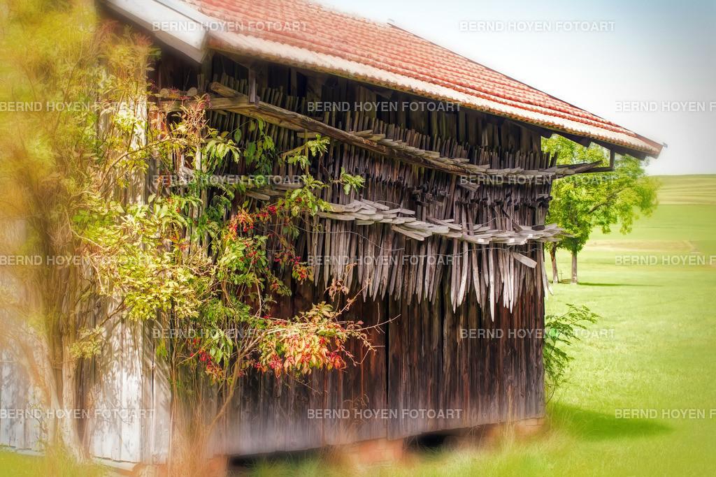 bavarian barn | Fotografie im Allgäu, Deutschland / digital leicht nachbearbeitet / malerischer Effekt. | Photo in Allgäu (German Alpine region), Germany / digitally slightly reworked / picturesque effect.