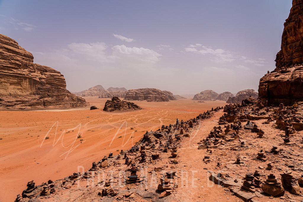 Berühmte Wüste | Ein steingeführter Weg entlang der Wüste.