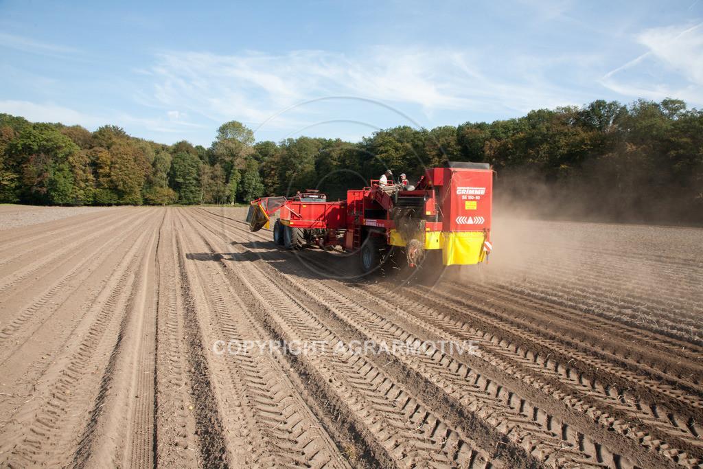 20110929-IMG_5898 | Ernte auf einem Kartoffelfeld - AGRARBILDER