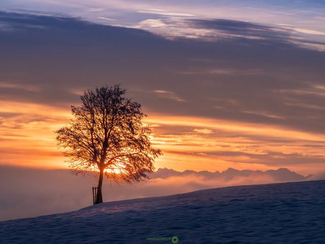 Wetterwechsel | An einem frühen und kalten Wintermorgen