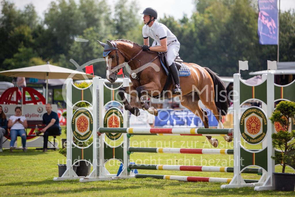 190719_LC_SprPf-A-010 | Lopshorn Classics 2019 Springpferdeprüfung Kl. A** 4-5 jährige Pferde