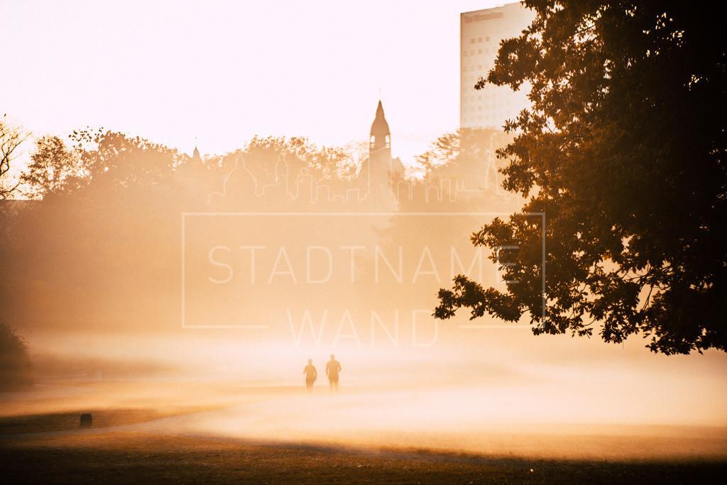 Zoowiese im Herbst  | Wenn der Nebel in den Morgen steigt, findet der Tag seinen Weg.