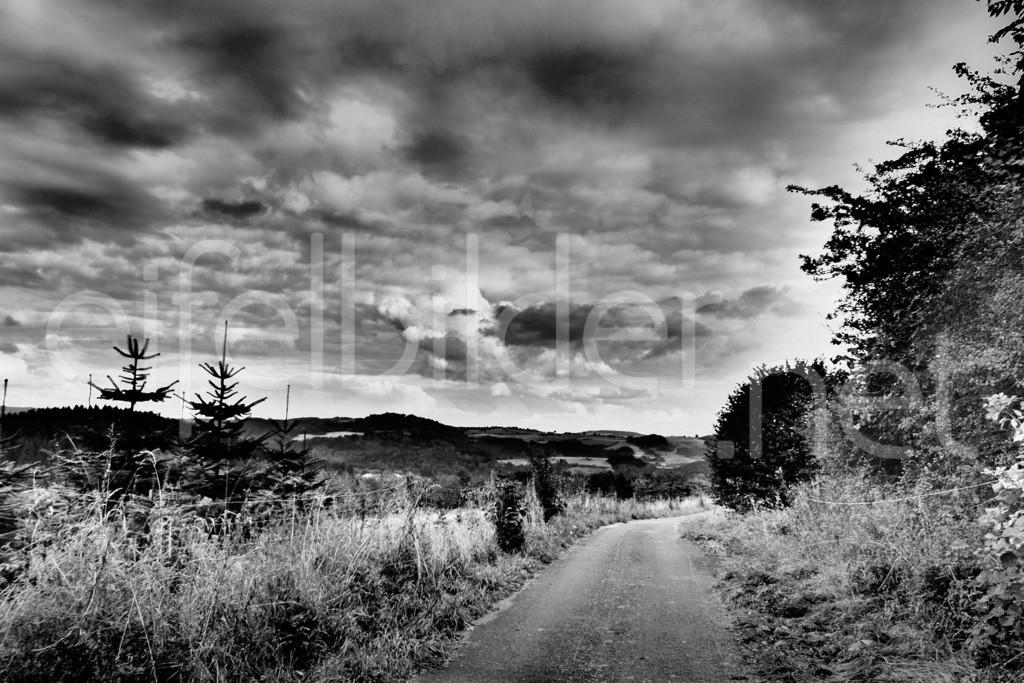 Landschaft bei Üdersdorf | Daun Üdersdorf in der Vulkaneifel