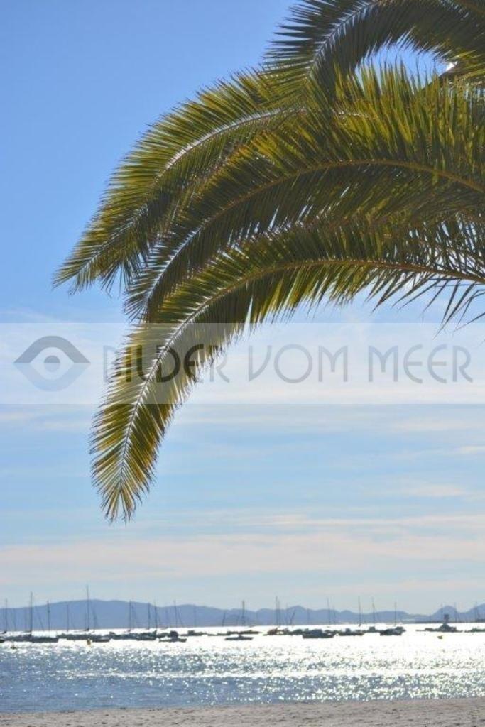 Strand Bilder vom Meer | Strandpromenade San Pedro del Pinatar