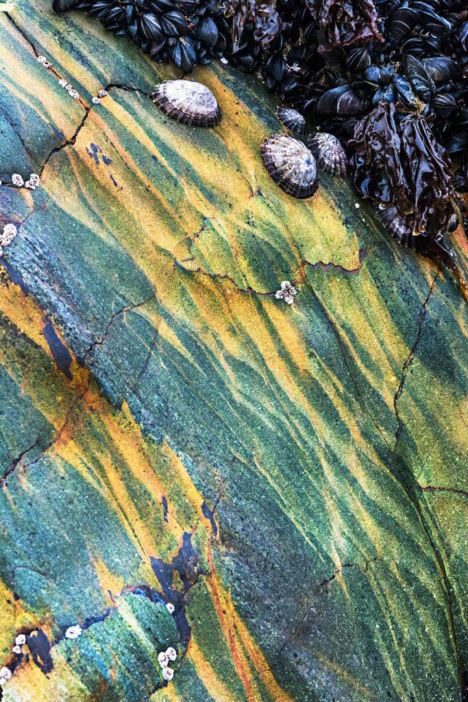 Steinstrukturen  | Triptychon Clonakilty I - 1 | Best. Nr. irl_2016_04_3997 | Gestein in Grüntönen an der Küste von Clonakilty, Irland