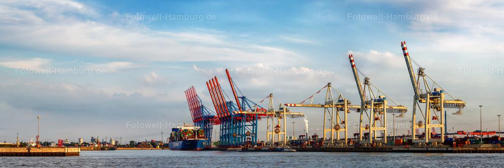 10200814 - Panorama am Containerterminal | Panoramablick auf das Terminal Tollerort im Hamburger Hafen mit der CSCL Mercury.