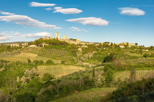 San Gimignano in der Toskana   Blick über die Hügellandschaft auf die Skyline von San Gimignano, das oft auch