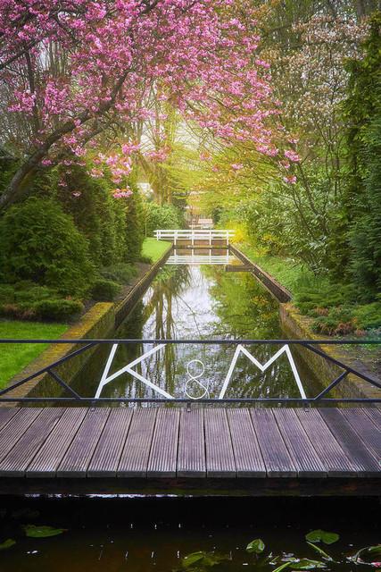 Der Frühling erwacht | Wenn der Frühling erwacht, fangen die Farben an zu leuchten. Das satte Grün in all seinen Ausprägungen, das Rosa der Kirchblüte, das Weiß der Magnolien und viele andere Töne kämpfen um Aufmerksamkeit. Ein stilles Gewässer verdoppelt mit seiner Reflexion diese Schönheit.