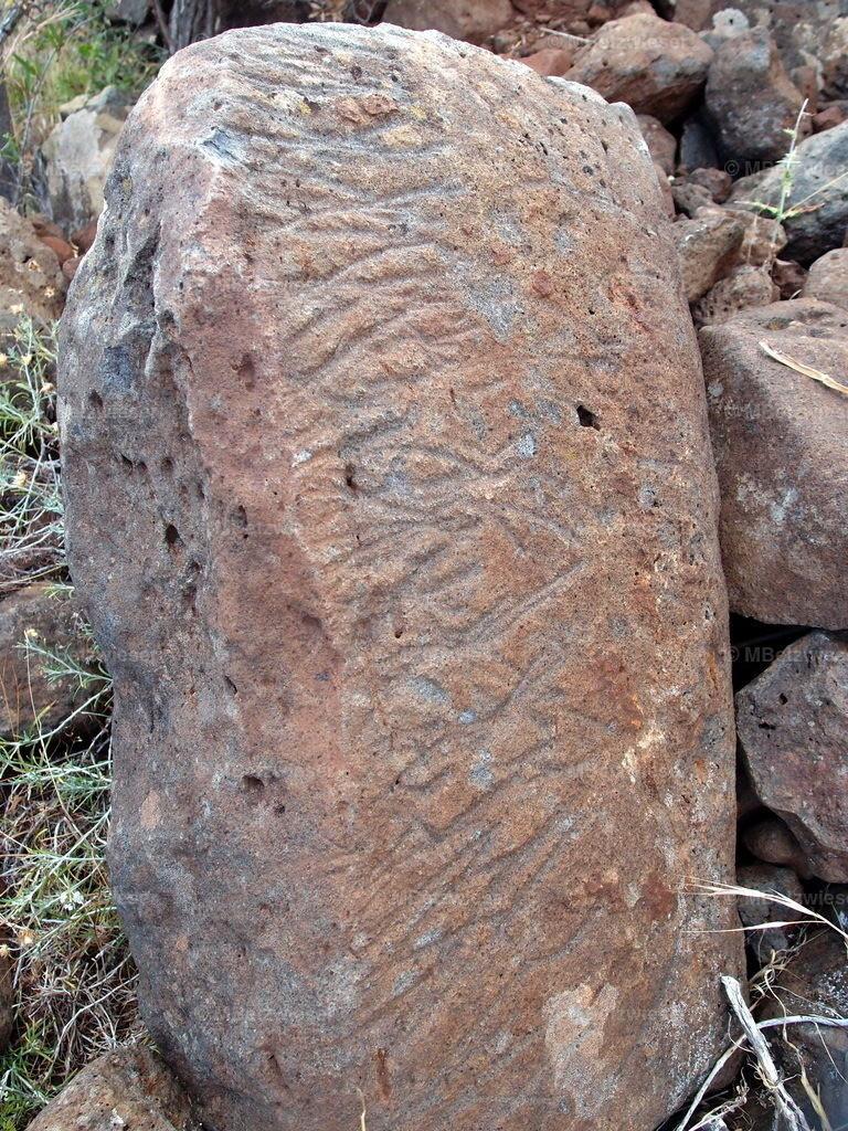 P5121403 | gefunden in Garafia