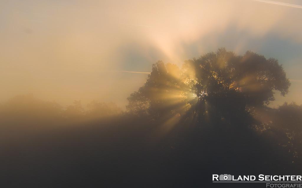 Die Sonne geht auf/Morning Sunrise