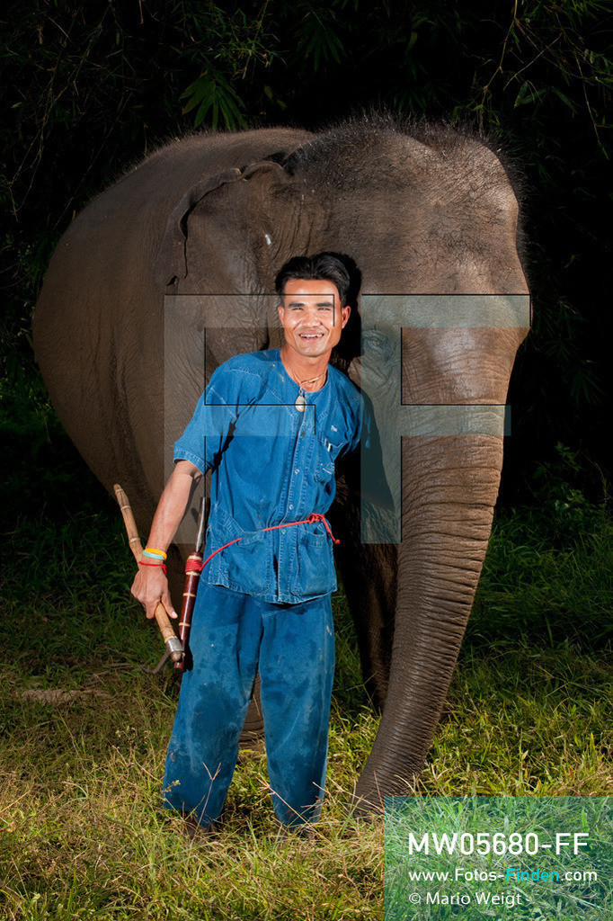 MW05680-FF | Thailand | Goldenes Dreieck | Reportage: Mahut und Elefant - Ein Bündnis fürs Leben | Mahut Pom und sein Asiatischer Elefant Nam Choke  ** Feindaten bitte anfragen bei Mario Weigt Photography, info@asia-stories.com **