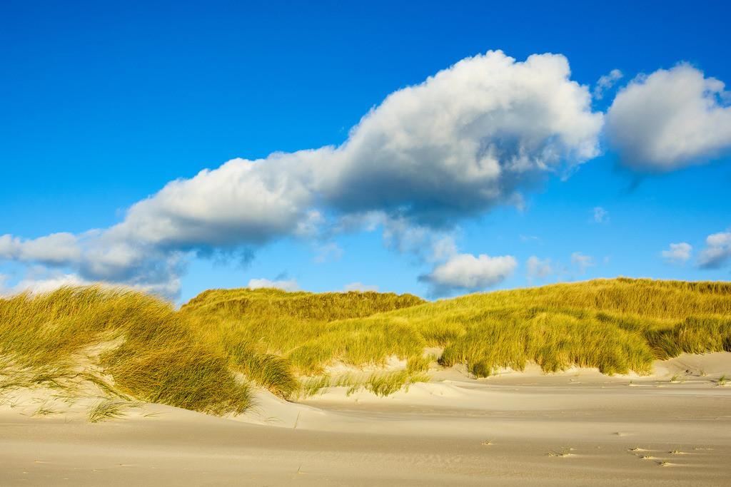 Landschaft mit Dünen auf der Insel Amrum | Landschaft mit Dünen auf der Insel Amrum.