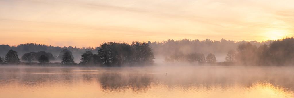 Golden Morning Pano | Herbstliche Morgenstimmung am Bossee im Panorama.