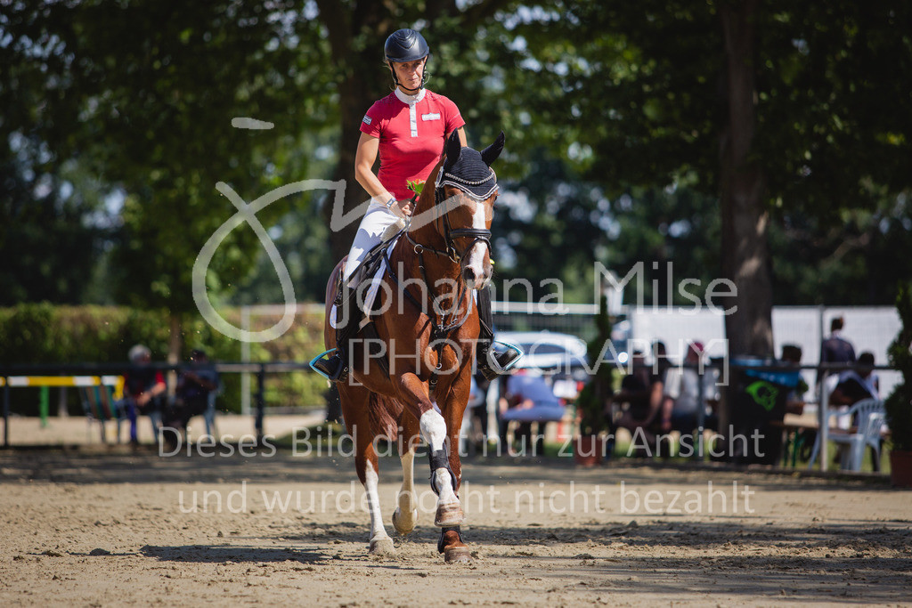 200819_Delbrück_Sprpf-A_2_1-275 | Delbrück Masters 2020 Springpferdeprüfung Kl. A** 4-6jährige Pferde