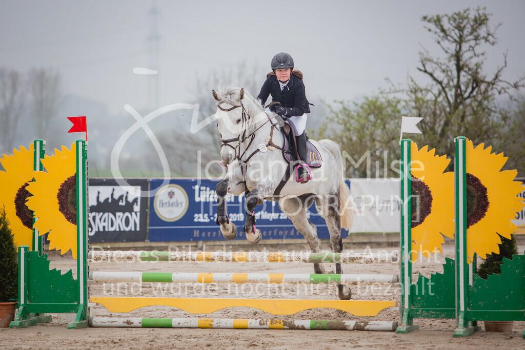 190406_Frühlingsfest_StilE-075   Frühlingsfest der Pferde 2019, von Lützow Herford, Stil-WB mit erlaubter Zeit