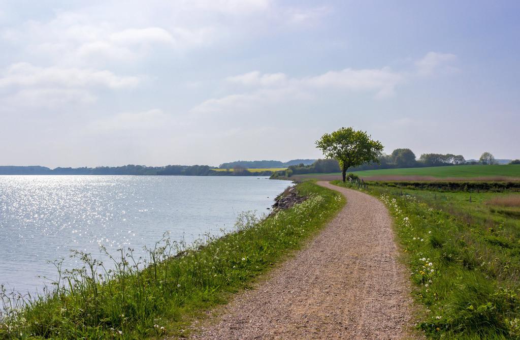 Arnis an der Schlei | Weg entlang der Schlei