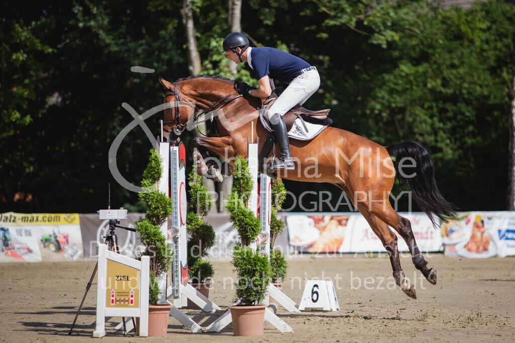 200819_Delbrück_Sprpf-A_1_2-038 | Delbrück Masters 2020 Springpferdeprüfung Kl. A* 4jährige Pferde