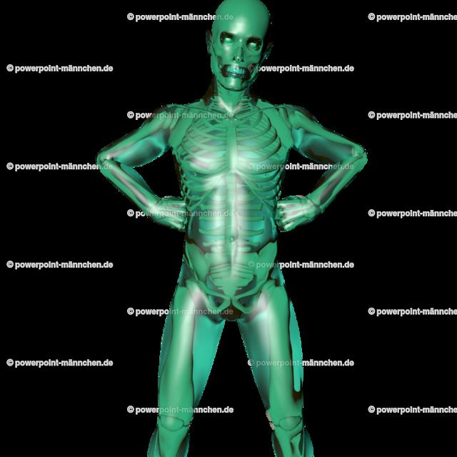 a transparent man for the medical student | Quelle: https://3dman.eu   Jetzt 250 Bilder kostenlos sichern