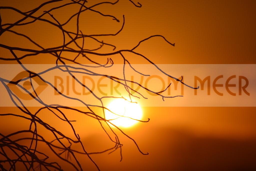 Fotoausstellung Bilder vom Meer | Sonnenuntergang in der Steppe, Spanien