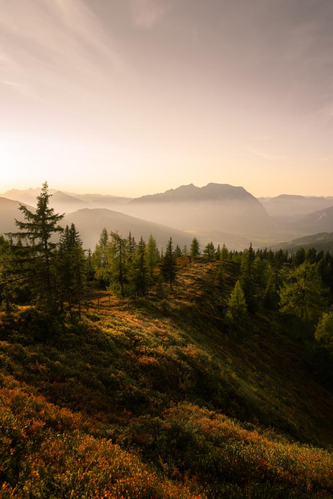 Goldener Herbst   Blick vom Mölbegg auf den Grimming.
