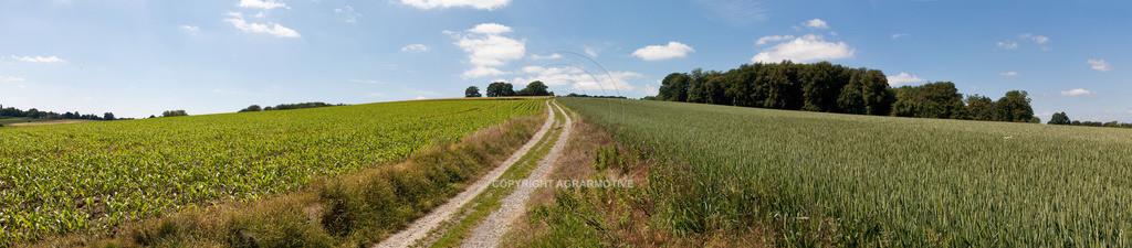 20090613-IMG_3192_panorama | Symbolbild Zukunft - AGRARMOTIVE Bilder aus der Landwirtschaft