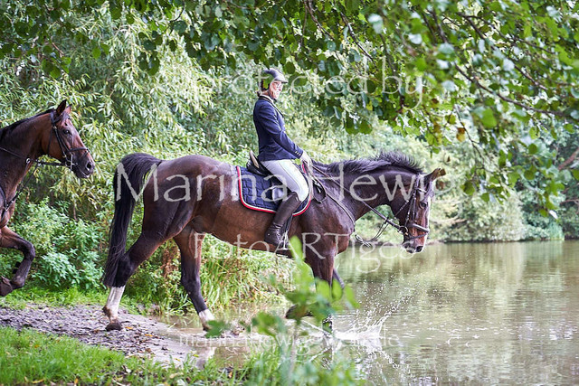 Jagd Perdoel  214953_Marina Hewig