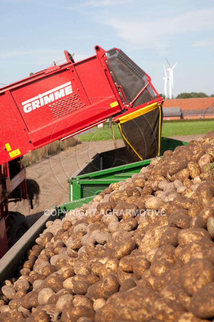 20110929-IMG_5990   Ernte auf einem Kartoffelfeld - AGRARBILDER