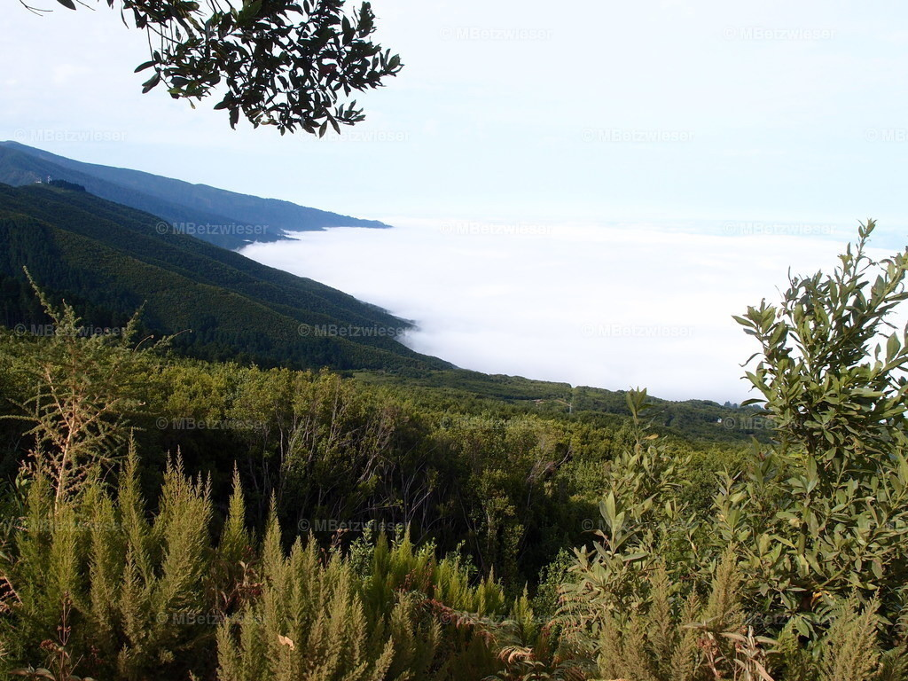 P9166572 | Die Ostseite von La Palma