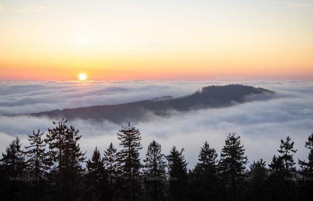Nebel im Taunus | 25.11.2020, Schmitten (Hessen): Blick vom Gipfel des Großen Feldbergs im Taunus auf Nebel im Tal und den Altkönig, der zum Sonnenaufgang aus dem Nebel herausragt.