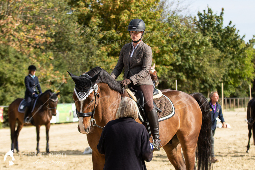 pferdefotografie sb-fotografien | www.sb-fotografien.de