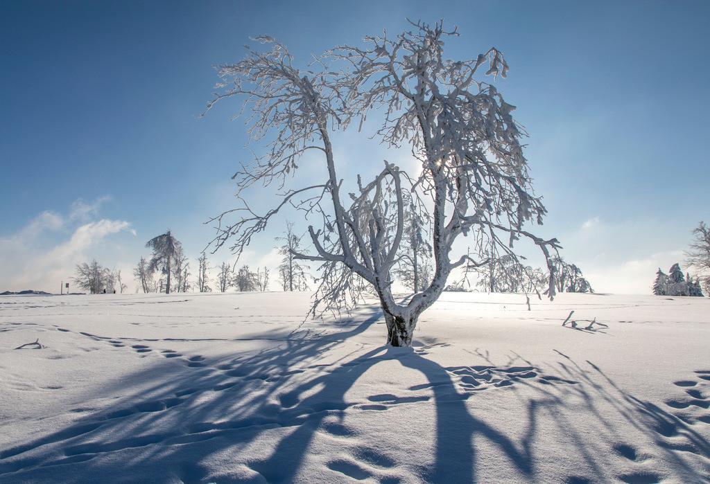 JT-170116-114   Winter auf dem Kahlen Asten, Sauerland, höchster Berg in NRW, tief verschneite Landschaft