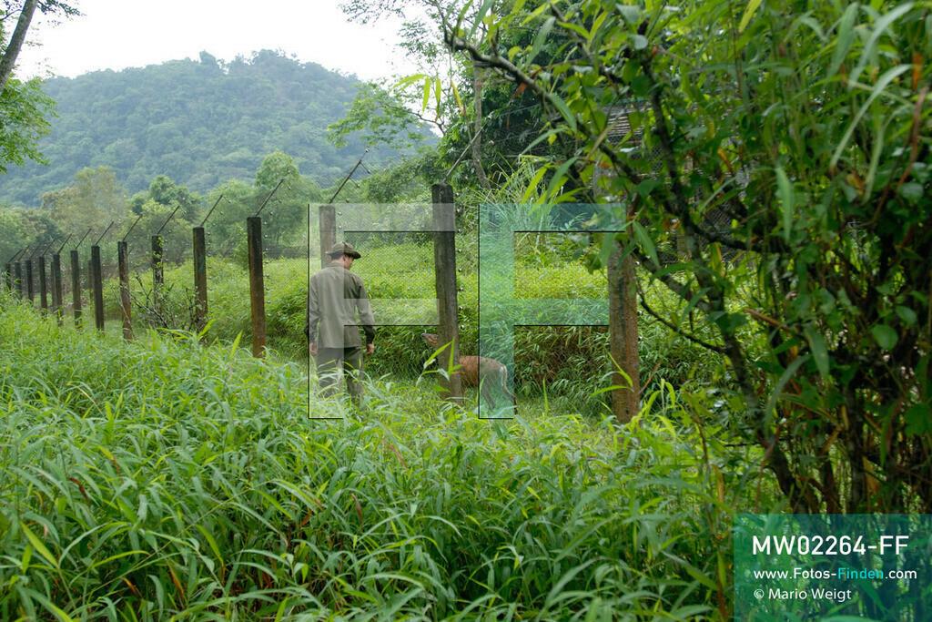 MW02264-FF | Vietnam | Provinz Ninh Binh | Reportage: Endangered Primate Rescue Center | Wild in der Semi-Anlage. Der Deutsche Tilo Nadler leitet das Rettungszentrum für gefährdete Primaten im Cuc-Phuong-Nationalpark.   ** Feindaten bitte anfragen bei Mario Weigt Photography, info@asia-stories.com **